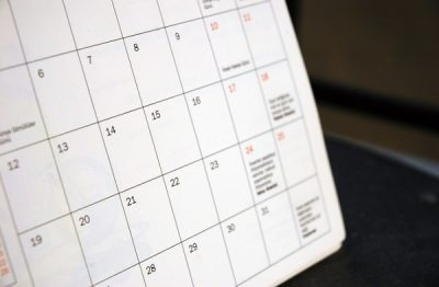 Conception Calculator: Find Your Conception Date
