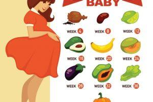 How Big Is Your Baby Month by Month – Baby Growth and Development