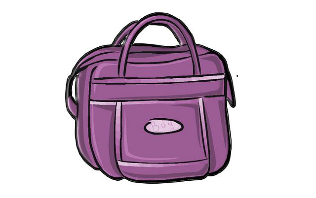 ladies-bag