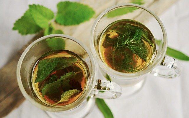 guyabano leaves Tea