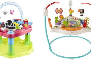 Exersaucer vs Jumperoo Comparison